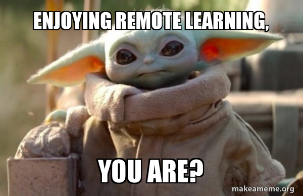 Enjoying Remote Learning are You?