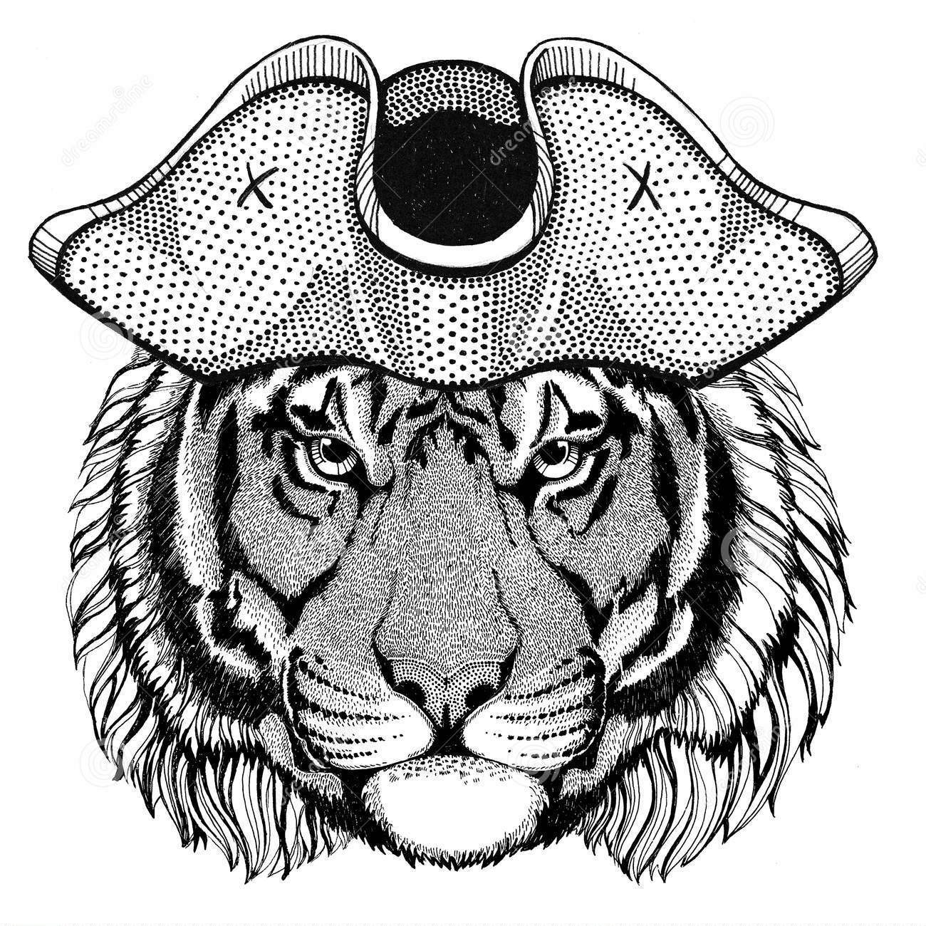 https://www.southhadleyschools.org/cms/lib/MA02202349/Centricity/Domain/1106/wild-tiger-wearing-pirate-hat-cocked-hat-tricorn-sailor-seaman-mariner-seafarer-animal-cocket-93889198.jpg